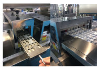Stainless Steel Pharmacy Alu Alu Blister Packing Machine With Mold Easily Replaceable